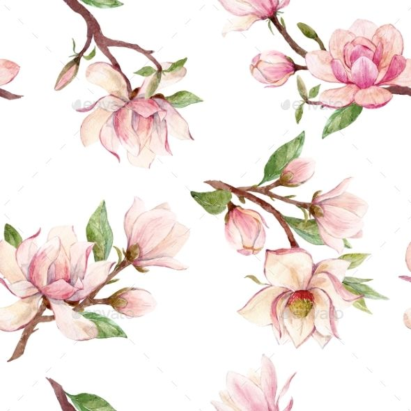 Watercolor Magnolia Floral Pattern Flower Drawing Floral Painting Floral Pattern