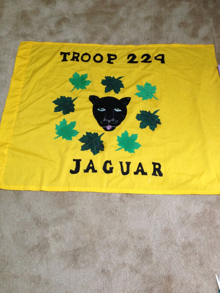 cub scout flag stand