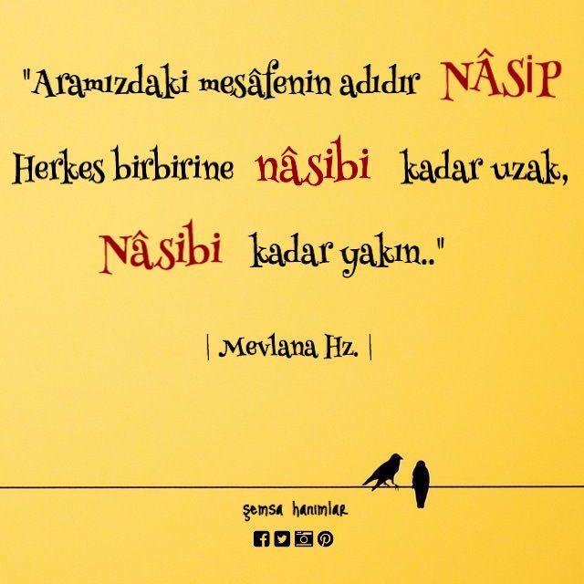 #nasip #mevlana #şiir #ankara #risale #tefsir #meal #Kuran #hadis