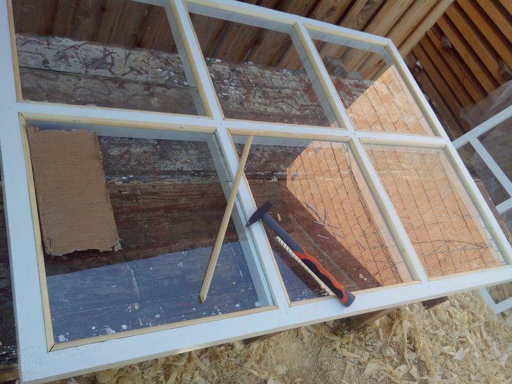 window (окно теплицы)