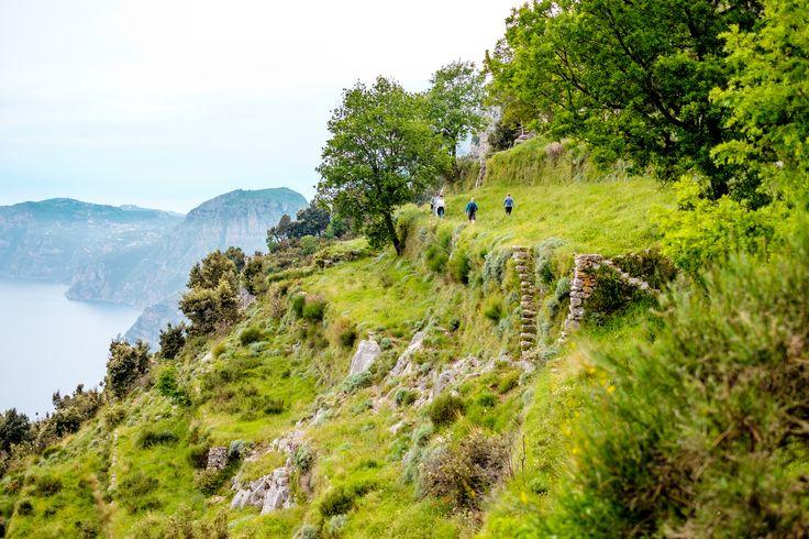Come to do some trekking on Amalfi Coast. Visit the Path of the Gods! #amalficoast #pathofthegods #amalfi #positano #nocelle #agerola #panorama #picoftheday #view #landscape #sea #sun #trekking #path #stunningview #amazing #beautiful #nature #naturalpath #italy #southofitaly #visitamalficoast #visitsalerno #salerno #livesalerno #sentierodeglidei #pathofgods