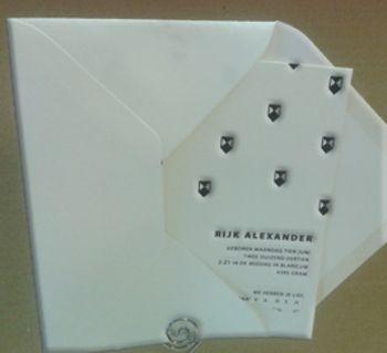 www.geboortekaartenonline.nl # letterpress # modern # zwart # cranes lettra katoenpapier