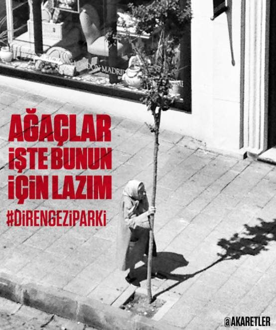 this is why we need trees #direngziparki #occupygezi  #chapulling
