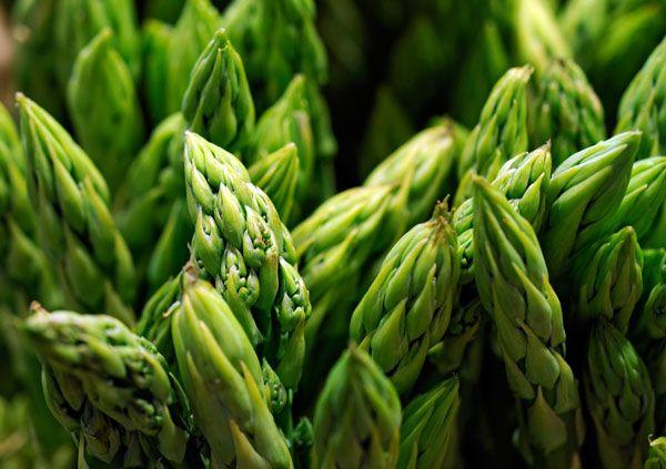 Asparagus- espárragos