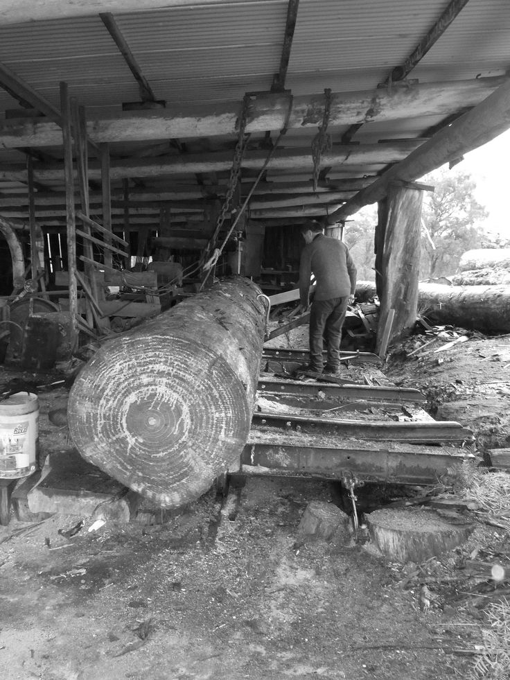 Working the mill just off the Bridport/Scottsdale Road in Dorset, North East Tamania