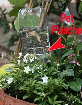Bewässerung in der Urlaubszeit, so vertrocknet keine Pflanze | Der Garten im Sommer