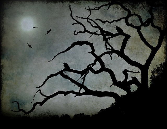 Silhouette Tree and Ravens - Colour Inspiration