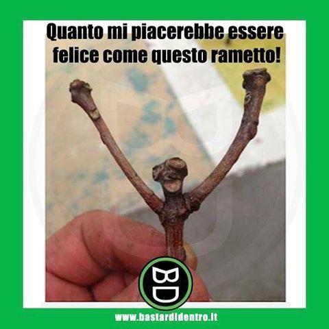 Seguici su youtube/bastardidentro #bastardidentro #ramo #felicità www.bastardidentro.it