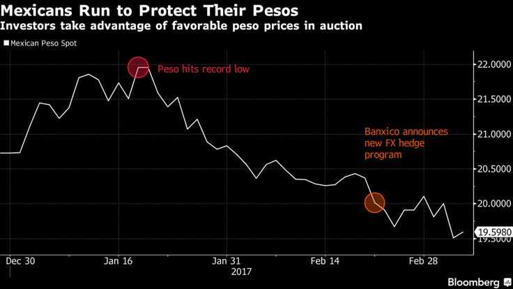 Strong demand for contracts that protect from declines in Mexico's peso shows lingering concern the currency is vulnerable to a fresh selloff after a six-week rally.