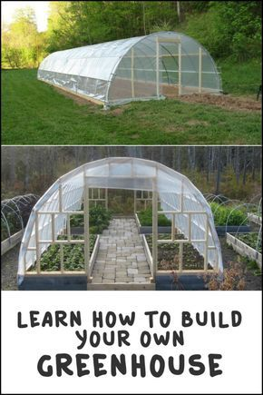 diy greenhouse gardens green houses and urban gardening