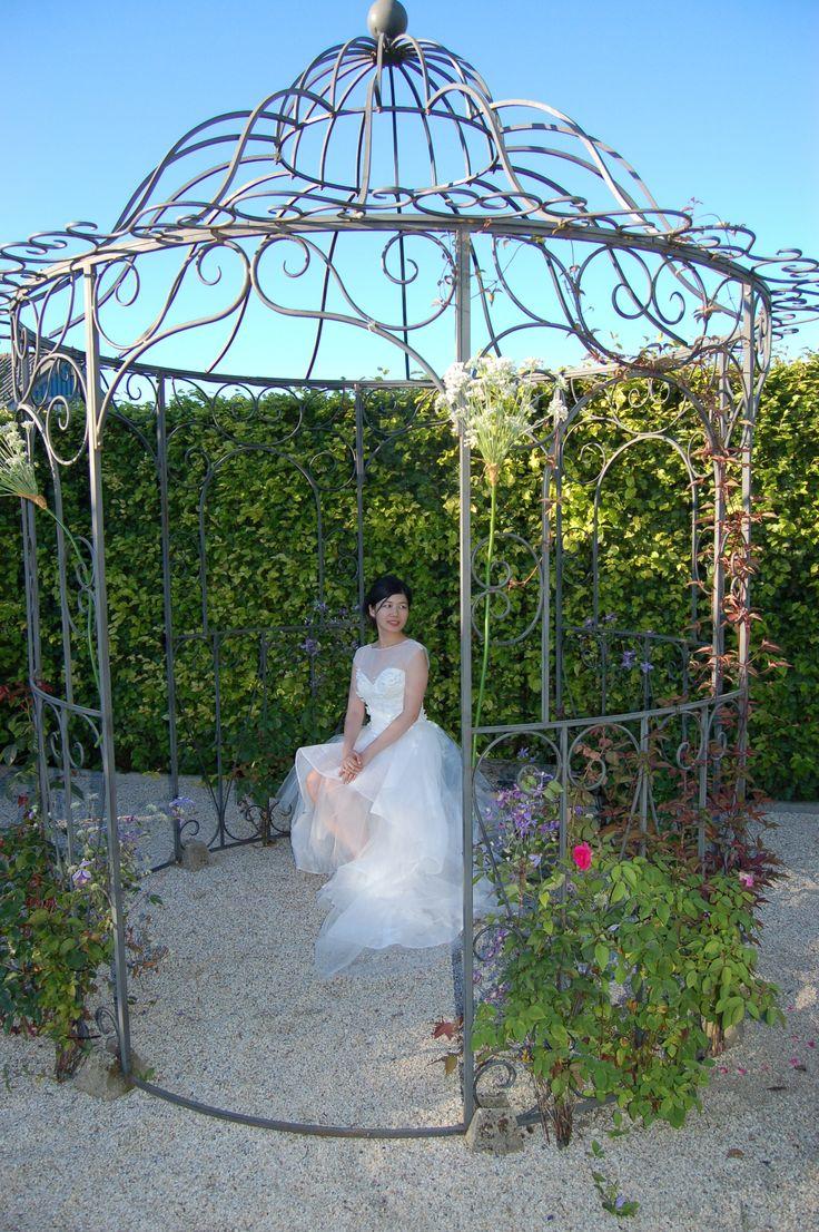 Nog even en ons prieel wordt overwoekerd met witte en lichtroze rozen!