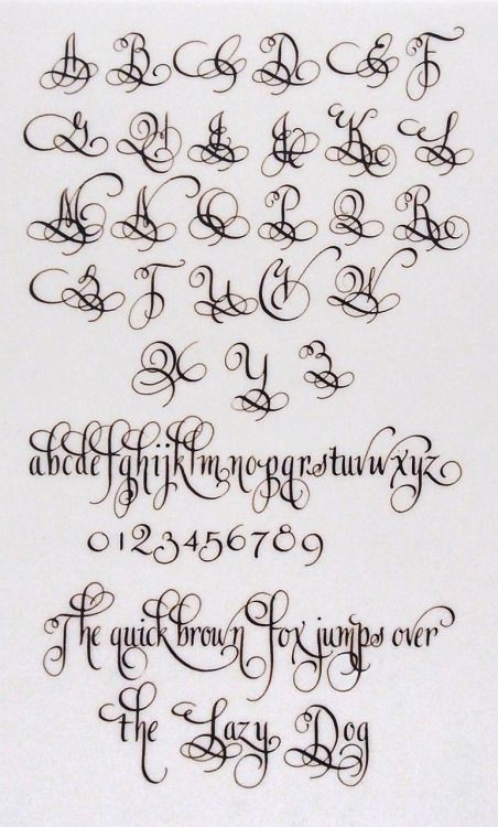 Best 25 calligraphy alphabet ideas on pinterest Calligraphy books free