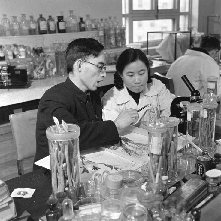 For 40 years, no one knew this woman discovered a malaria cure. Now she's won a Nobel. Updated by Julia Belluz on October 6, 2015