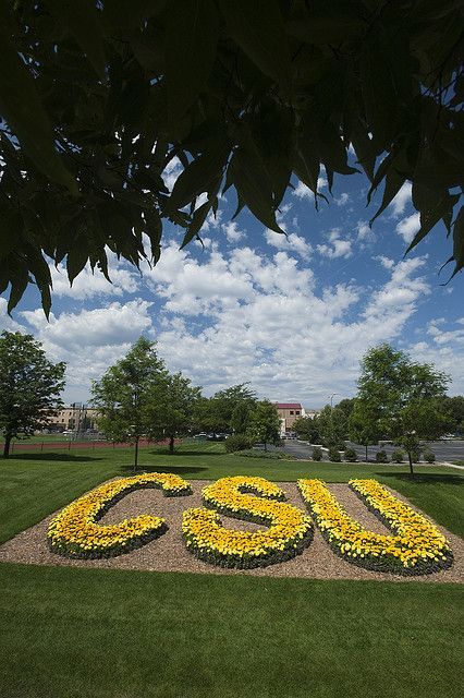 CSU, Ft. Collins, CO