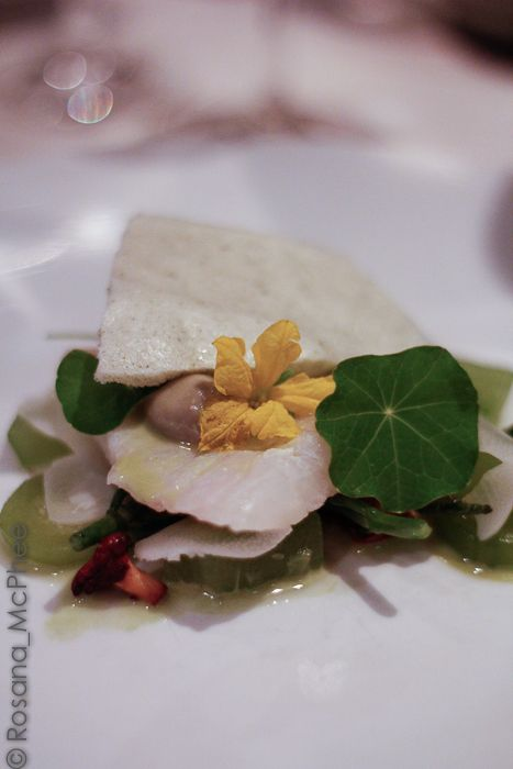 Poached brill: a very tasty compressed cucumber, hearts of palm, poached and fresh oyster, samphire, delicate and small chanterelle mushroom, Nasturtium - a very pretty and delectable dish by Chef Adam Simmonds