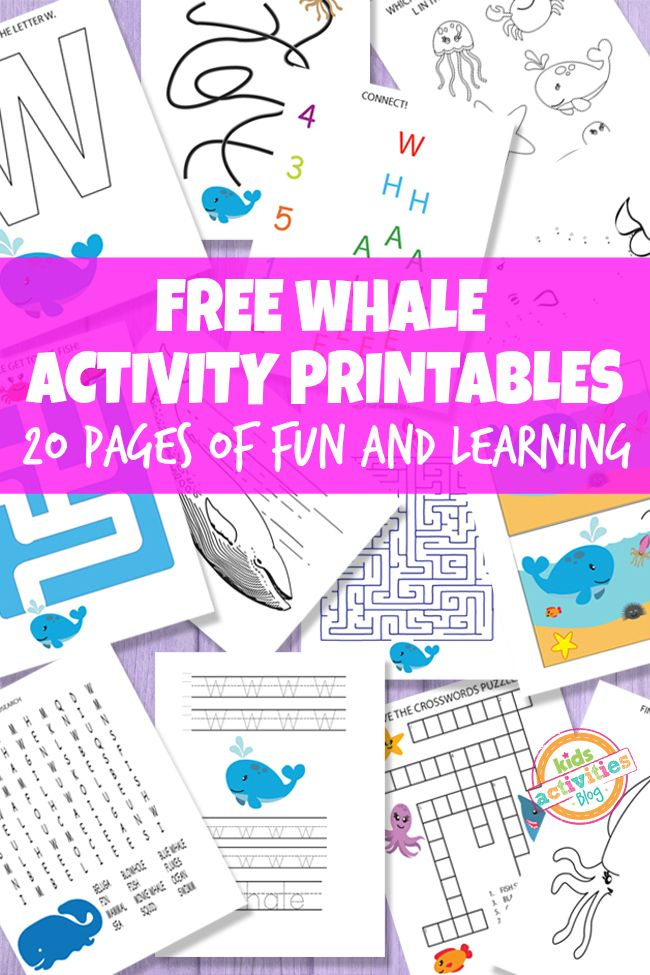 Whale Printable Activities For Kids - Kids Activities Blog