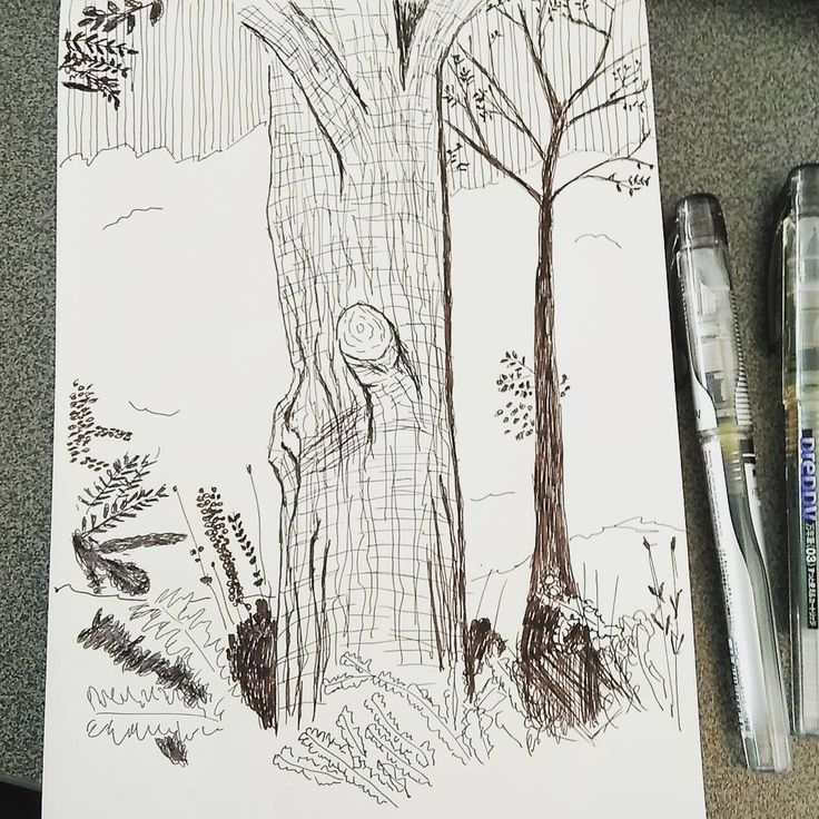 Pen sketch #sketchdrawing #sketching #drawing #illustration #preppyfountainpen