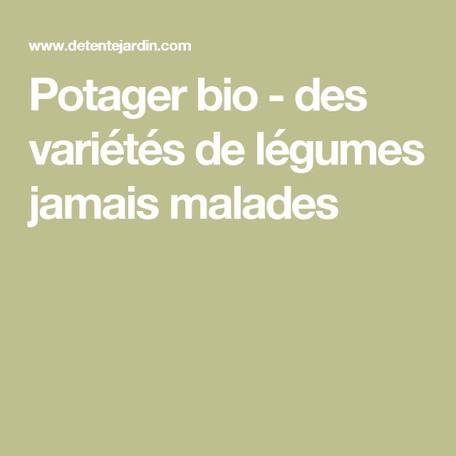 Potager bio - des variétés de légumes jamais malades
