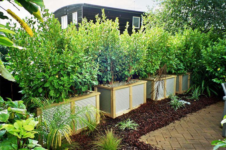 Steel Planters nz Wooden Planters nz Google