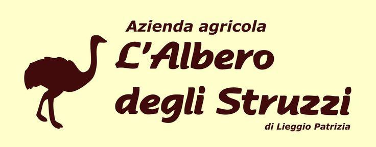 Azienda Agricola L' ALBERO DEGLI STRUZZI di Lieggio Patrizia - Penna in Teverina località Muralto (TR)
