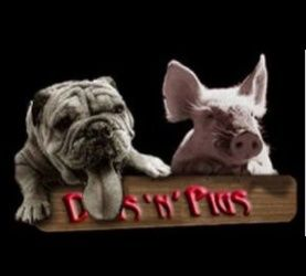 Check out Dogs'n'Pigs on ReverbNation