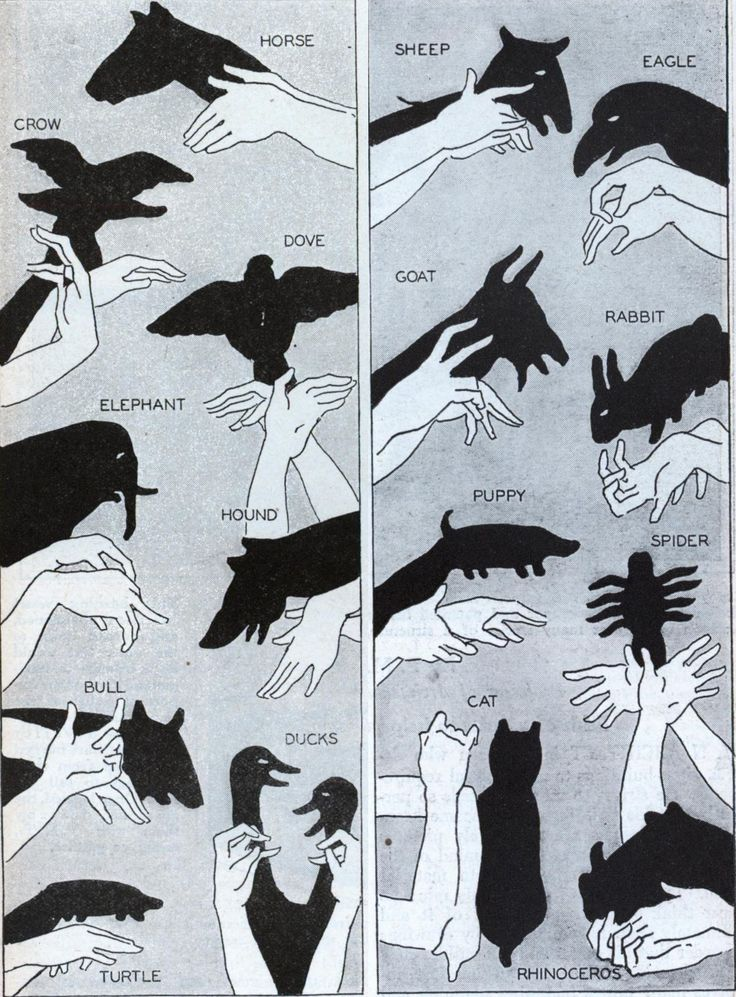 Who doesn't love a good shadow show? This article from the January, 1930, issue of Modern Mechanics , covers the basics.