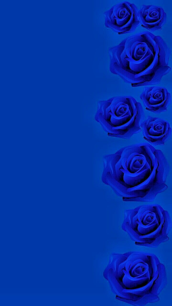 Wallpaper By Artist Unknown Blue Wallpaper Iphone Blue Roses Blue Wallpapers