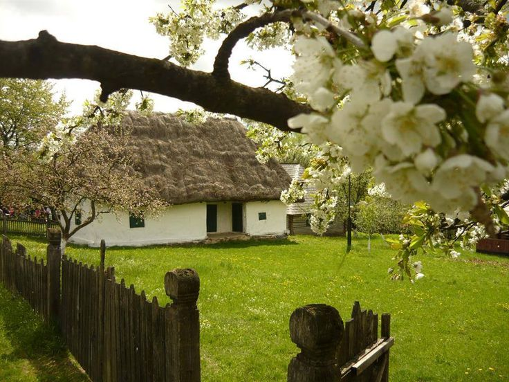 Romanian house in the countryside