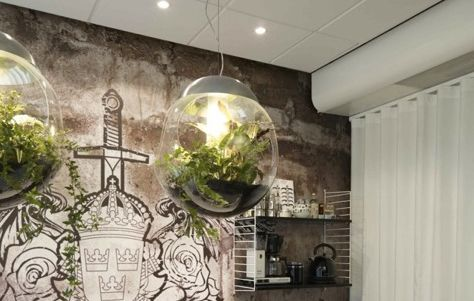 lights that grow plants and cleans the air!Pendants Lamps, Plants Chand, Dining Room, Trav'Lin Lights, Wall Murals, Babylon Lamps Greenwork, Triple Awesome, Pendants Lights Plants, Interiors Lights