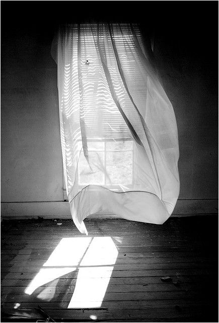 : Window Curtains, White Photography, Black And White, White Rooms, Photography Art, Summer Breeze, Life Photography, Flowers Girls Hairstyles, Open Window