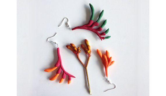 Kangaroo Paw Earrings | Molly Coombs Marr | Jewellery Design | Polymer Clay | Australiana | Australian Design