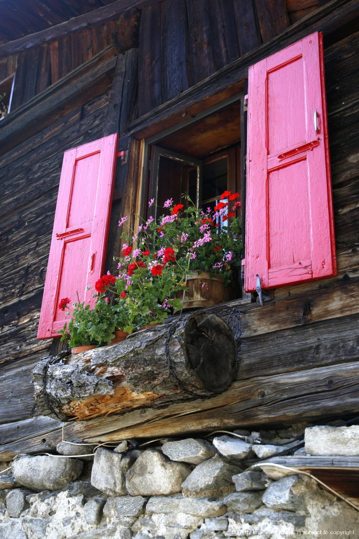 Love the log window box!