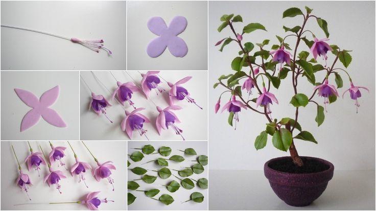Fuchsia - Fukszia https://www.facebook.com/Csodavirag