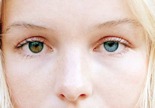 Kate Bosworth's eyes. They're stunning.