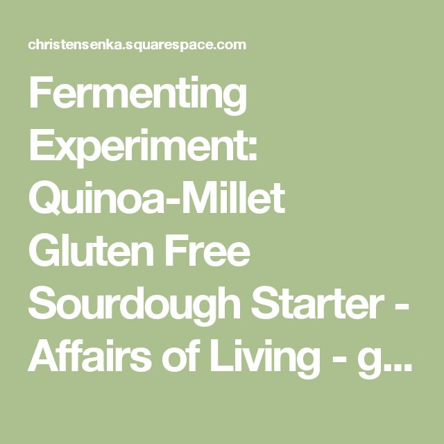 Fermenting Experiment: Quinoa-Millet Gluten Free Sourdough Starter - Affairs of Living - gluten-free, allergy-friendly, and whole foods recipes, resources, and tips