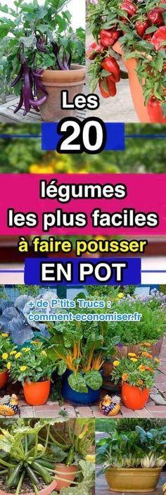 Et oui, certains légumes poussent facilement en pot sur le balcon. Il suffit de leur trouver un bac adapté, et surtout un endroit bien ensoleillé ou à l'ombre suivant la plante. Voici les 20 légumes les plus faciles à faire pousser en pot.  Découvrez l'astuce ici : http://www.comment-economiser.fr/les-20-legumes-les-plus-faciles-a-faire-pousser-en-pot.html