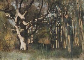 Paál László - Erdő napsütésben, 1872 körül