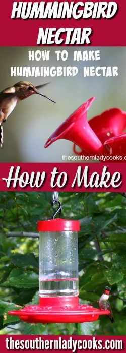 Hummingbird nectar is so easy to make.  Every year around May,  I get out the hummingbird feeder and fill it up with nectar because this is the time of year they start to return to …