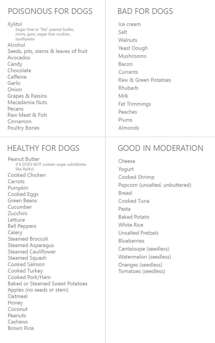 Human Food For Dogs- The Ultimate List. What food is good for your dog. What human food a dog can and can not eat. Foods that are poisonous for puppies.