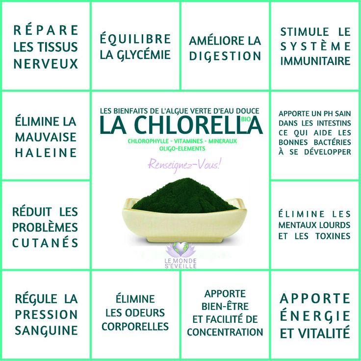 Une algue méconnue et pourtant aux effets impressionnants !