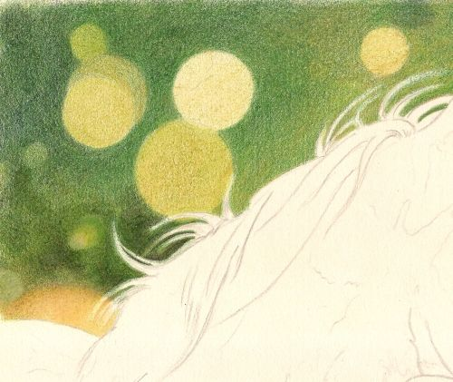 How to Draw a Bokeh Background with Colored Pencil 14