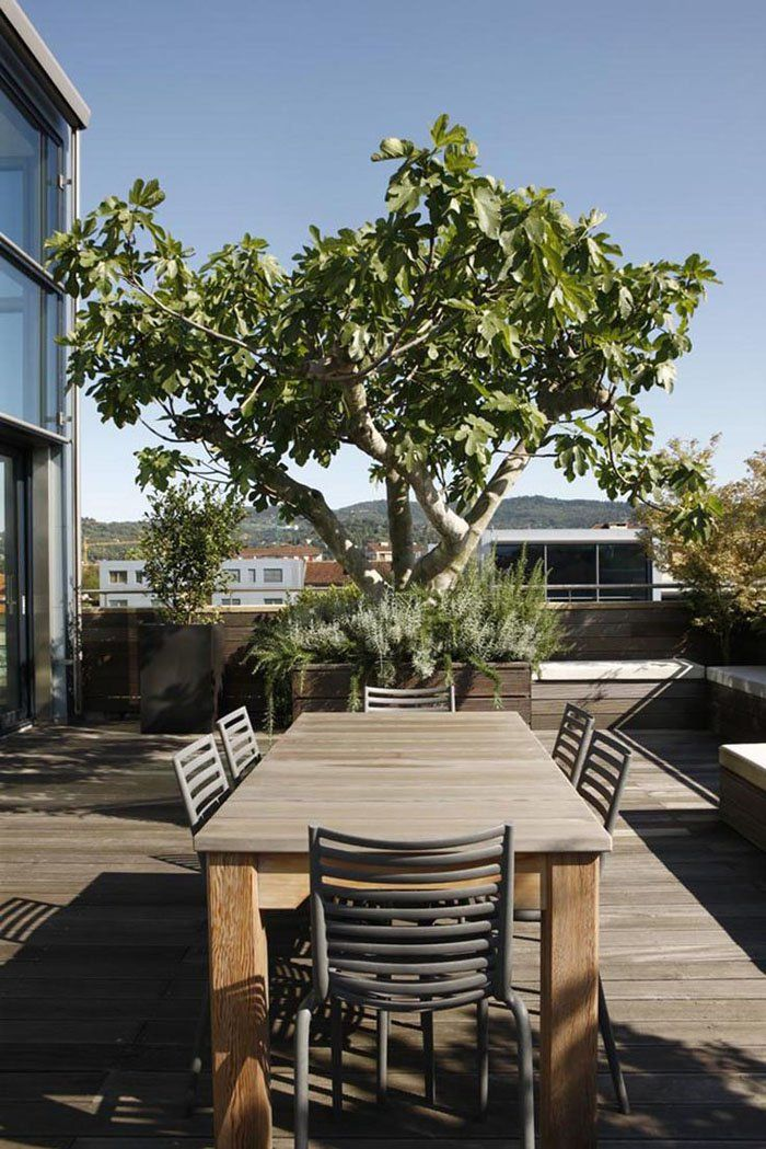 7 best Terrasse images on Pinterest Upcycle, Upcycling and - terrassen ideen garten dachterrassen