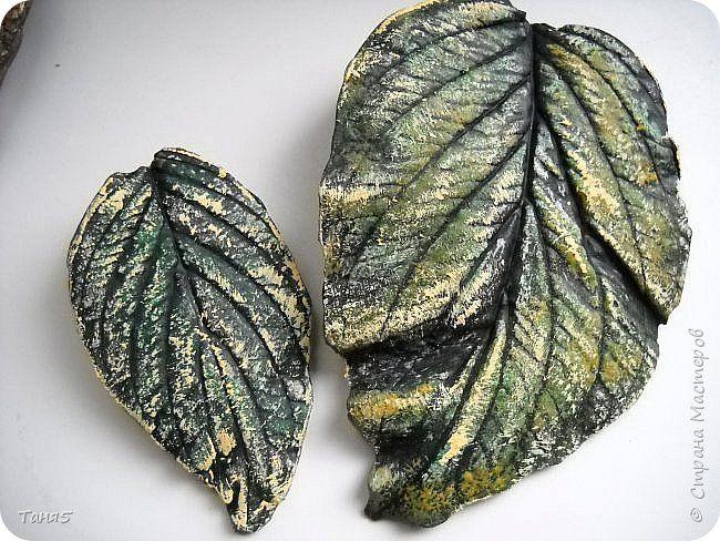 Поделка изделие Литьё Гипсовые листья Как я их делала Гипс фото 1