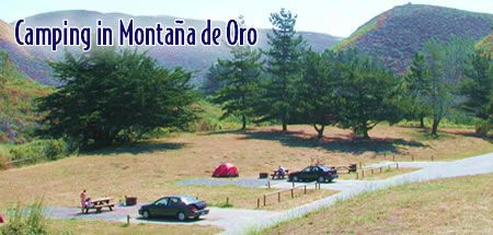 Camping At Montana De Oro Monta 241 A De Oro Sp Pinterest