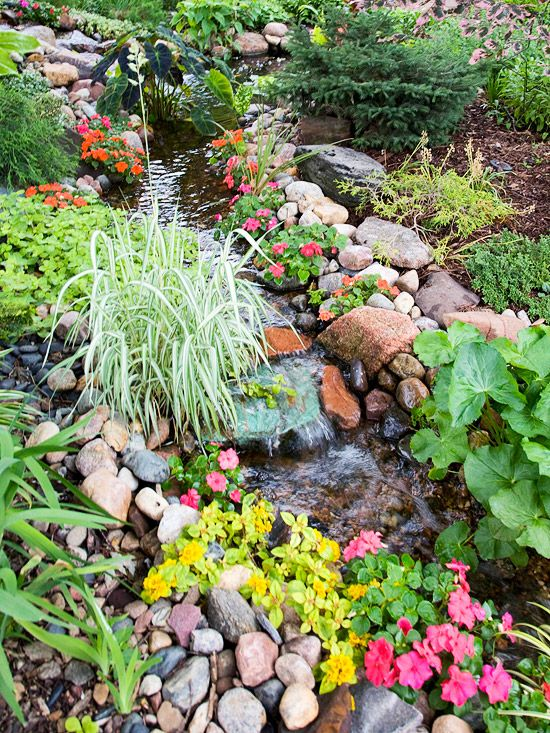 A Backyard Stream        Clumps of carefree plants amble easily along the free-form edges of this water feature.