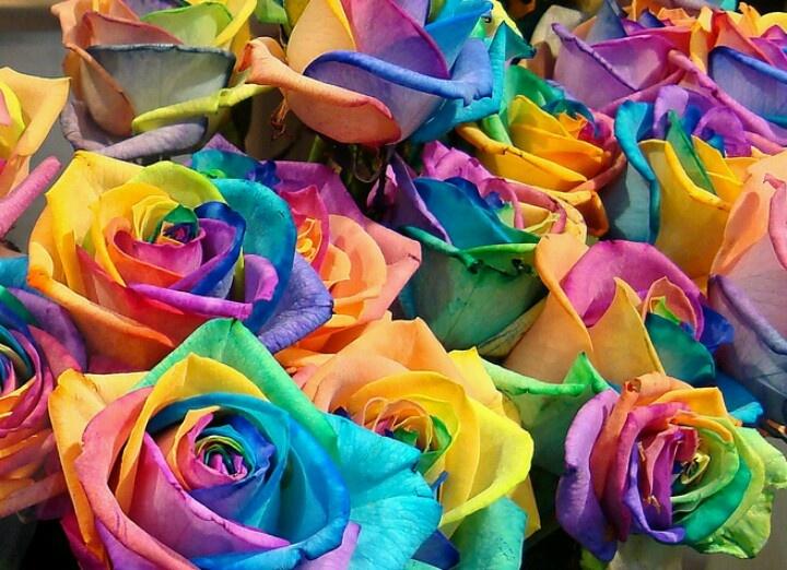 multi colored rose wedding ideas pinterest flowers. Black Bedroom Furniture Sets. Home Design Ideas
