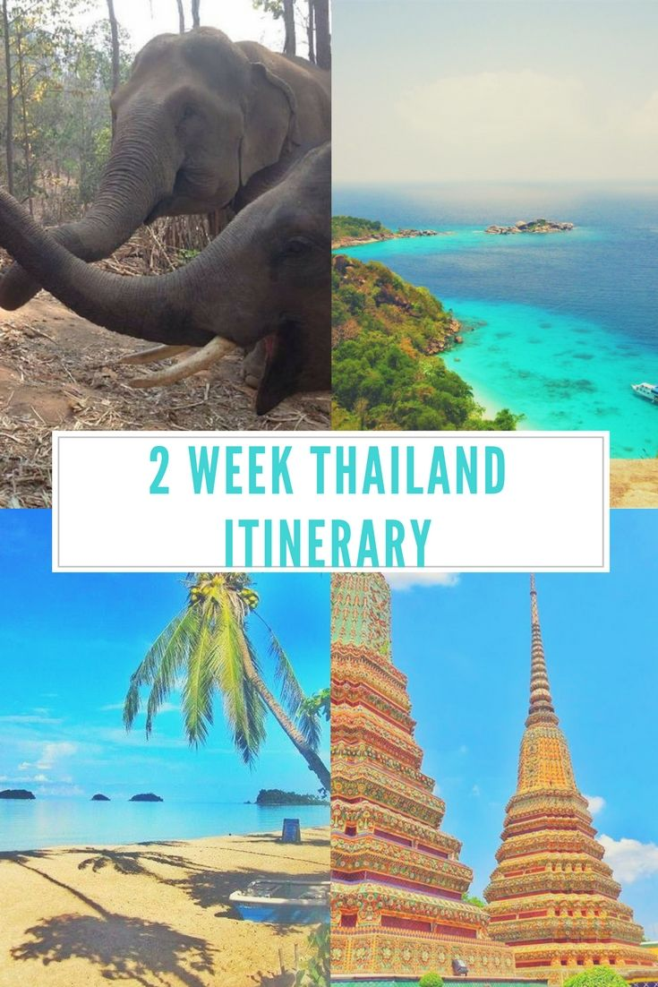 Itinerary for travel around bangkok chiang mKoh Tao, Koh Phangan, Koh Samui, Koh Lanta, Koh Lipe, Koh Phi Phi, Railay, Krabi, Phuket, Koh Similan, Koh Jum: Thailand Island Guide what to do activities beach snorkelling #traveling #travelling #asia #beaches #islands #holiday #destinations #summer #beach #bikini #sand #sea #ocean #diving #elephants #vacation #islandhopping #inspiration #motivation #travel #explore #passport #tropical #beautiful #paradise #nature #wanderlust #view #blue