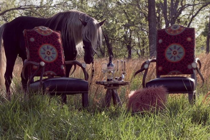 Rocky Mountain Horse Rockin 39 Sooner Ranch Our Horses
