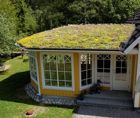 http://www.viivilla.se/globalassets/sweden/bygg/2013/tak/vegtech1.jpg