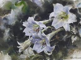 1000+ images about Artists: Arleta Pech on Pinterest   Watercolour ...